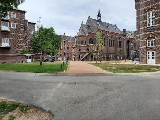 MaastrichtBonnefanten